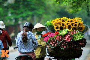 Kinh nghiệm đi du lịch Hà Nội theo mùa